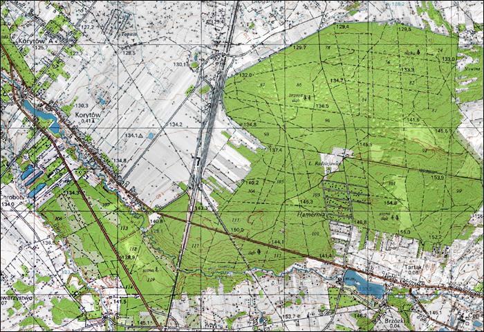 Harcerski Rajd Radziejewski - Mapa